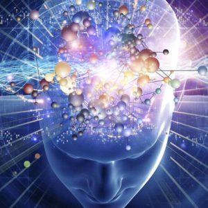 Интуитивный интеллект. Доступ к управленческим навыкам будущего.