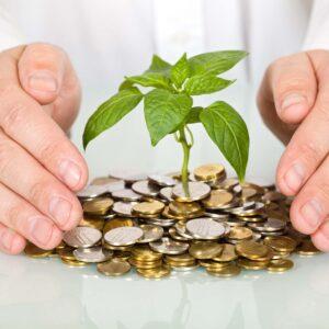 14.07.21г. в 12.00. Вебинар: Важность создания капитала для предпринимателей