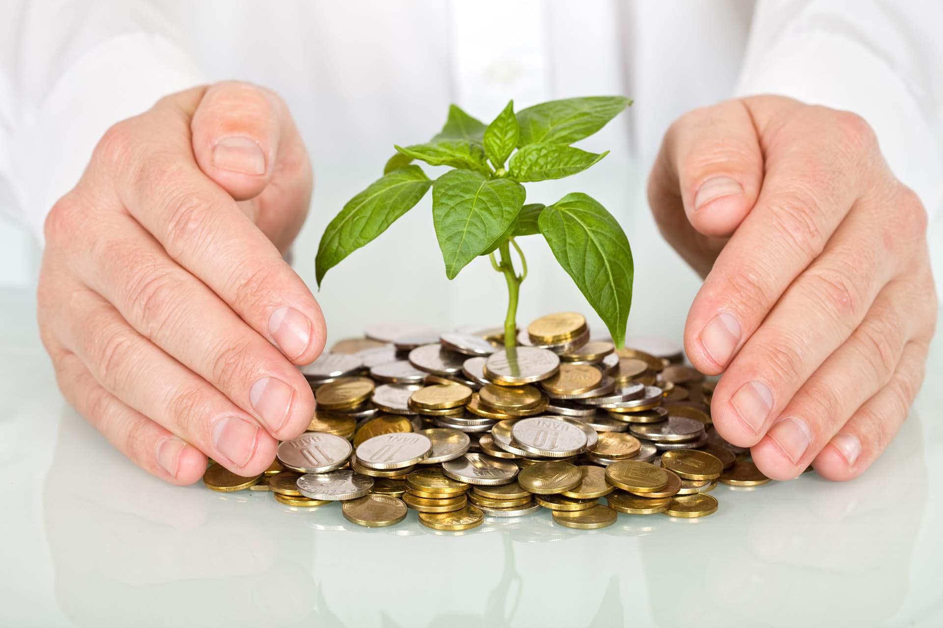 Вебинар: Важность создания капитала для предпринимателей